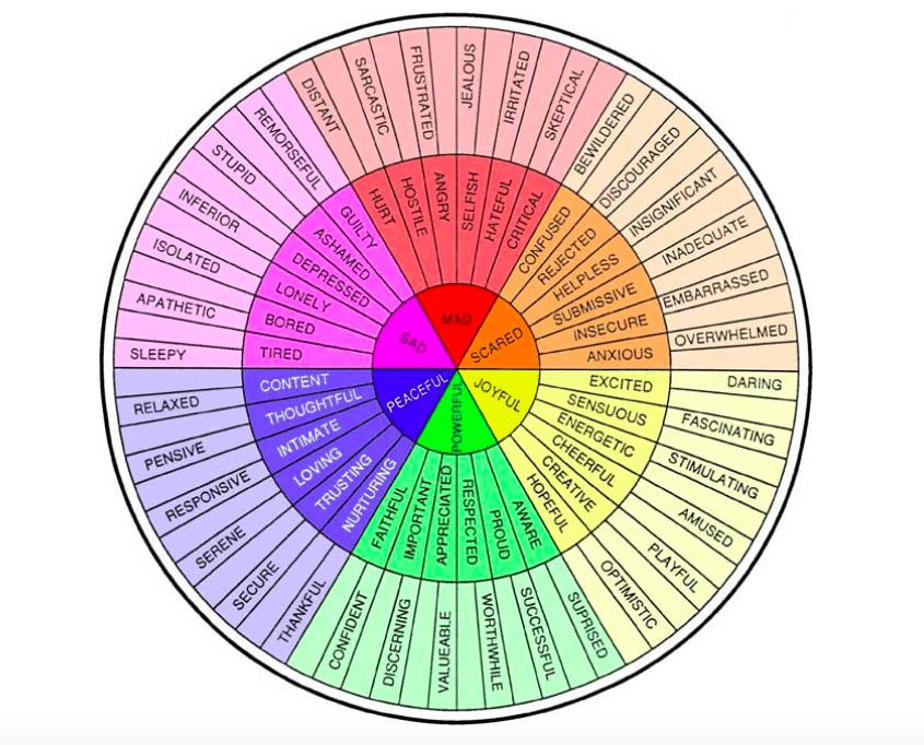 Emotional Check-Ins in a Teaching Webinar
